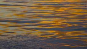 Salida del sol de la ma?ana en la luz de oro del verano, chispa hermosa de la agua de mar videoclip de 4K UHD almacen de metraje de vídeo