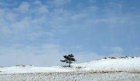 Salida del sol de la madrugada en las estepas de Tazheran Las colinas nevadas se colorean en sombras del ultravioleta Fotos de archivo libres de regalías