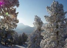 Salida del sol 2 de la montaña Fotografía de archivo
