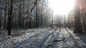 Salida del sol de la nieve Imágenes de archivo libres de regalías