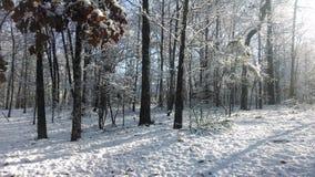Salida del sol de la nieve fotos de archivo