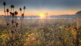 Salida del sol de la pradera Fotos de archivo libres de regalías