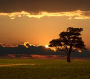 Salida del sol de la pradera Imagen de archivo libre de regalías