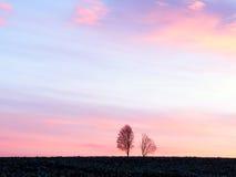Salida del sol de la primavera Imágenes de archivo libres de regalías