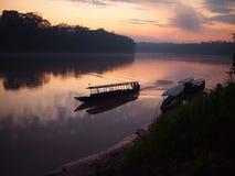 Salida del sol de la selva tropical del Amazonas Imágenes de archivo libres de regalías