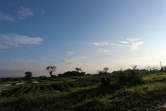 Salida del sol de Lanscapes en Ciperna Cirebon foto de archivo libre de regalías