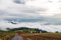 Salida del sol de niebla en el campo Fotografía de archivo libre de regalías