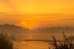 Salida del sol de niebla en el río Foto de archivo