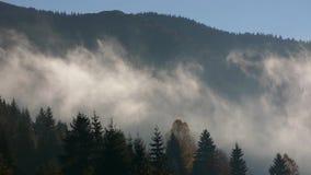 Salida del sol de niebla en montañas cárpatas almacen de video