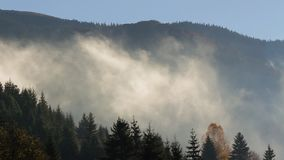 Salida del sol de niebla en montañas cárpatas metrajes