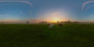Salida del sol de niebla en panorama esférico del prado Imagen de archivo