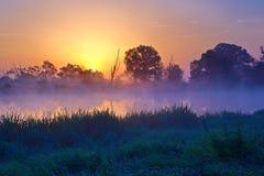 Salida del sol de niebla hermosa sobre el río de Narew. Fotografía de archivo