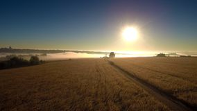 Salida del sol de niebla sobre el campo almacen de video