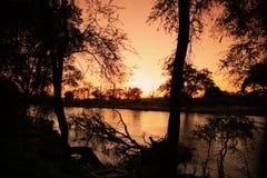 Salida del sol de oro Fotografía de archivo libre de regalías