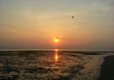 Salida del sol de oro fotografía de archivo