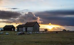 Salida del sol de Ottenby Fotos de archivo libres de regalías