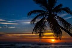 Salida del sol de Punta Cana - 05 Fotos de archivo