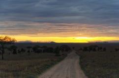 Salida del sol de Serengeti Imagen de archivo