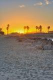 Salida del sol de Ventura entre de las siluetas de la palma Fotografía de archivo libre de regalías