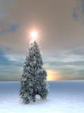 Salida del sol del árbol de navidad Foto de archivo
