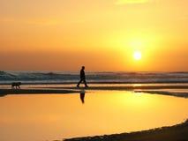 Salida del sol del caminante del perro Imagen de archivo libre de regalías