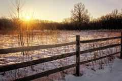 Salida del sol del invierno Imagen de archivo
