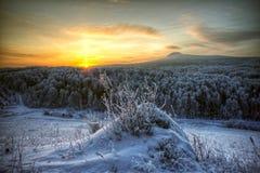 Salida del sol en el taiga siberiano Imágenes de archivo libres de regalías