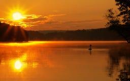 Salida del sol del lago con el cisne Foto de archivo