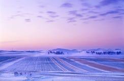 Salida del sol del prado del invierno Imagen de archivo libre de regalías