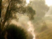 Salida del sol del resorte con el prado en la niebla Fotos de archivo