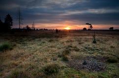 Salida del sol del verano sobre prados Imagen de archivo