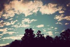 Salida del sol detrás de árboles silueteados Foto de archivo libre de regalías