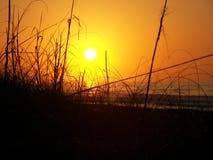 Salida del sol detrás de las dunas imagen de archivo