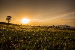 Salida del sol dramática encima imagen de archivo libre de regalías