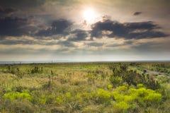 Salida del sol dramática sobre el parque nacional del coto de la pradera de Kansas Tallgrass foto de archivo