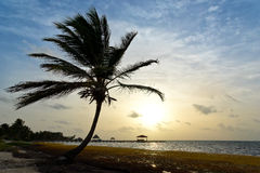 Salida del sol en Belice Fotografía de archivo