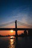 Salida del sol en Brooklyn Fotos de archivo libres de regalías