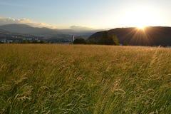 Salida del sol en campo de hierba del oro Imagen de archivo