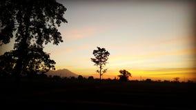 Salida del sol en campo del arroz Foto de archivo libre de regalías