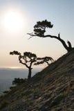 Salida del sol en Crimea Fotografía de archivo