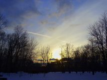 Salida del sol en el bosque imagen de archivo
