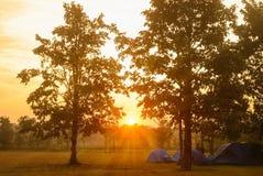 Salida del sol en el bosque con la tienda de campaña Imagen de archivo libre de regalías