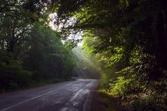 Salida del sol en el camino crimeo Antes de puesta del sol Foto de archivo libre de regalías