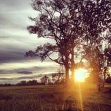Salida del sol en el campo Fotografía de archivo