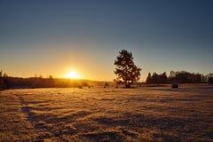 Salida del sol en el campo Imágenes de archivo libres de regalías