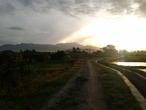 Salida del sol en el campo del arroz Imagenes de archivo