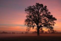 Salida del sol en el cantón OH Imagenes de archivo