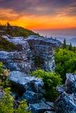 Salida del sol en el coto de las rocas del oso, en Dolly Sods Wilderness, Monon Fotografía de archivo libre de regalías