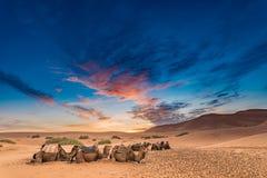 Salida del sol en el desierto del Sáhara Fotografía de archivo libre de regalías