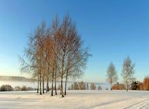 Salida del sol en el invierno. Fotos de archivo libres de regalías